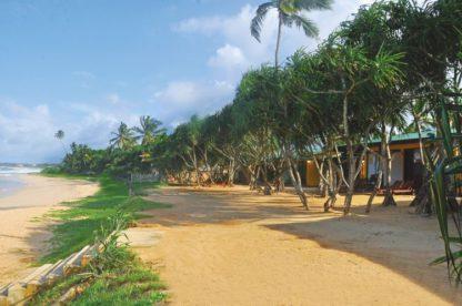 The Beach Cabanas